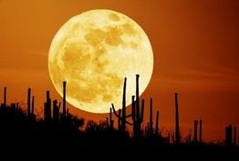 Full moon over desert